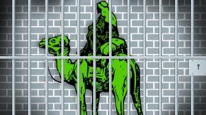 Image: Mashable http://mashable.com/2013/12/20/fbi-silk-road-arrests/